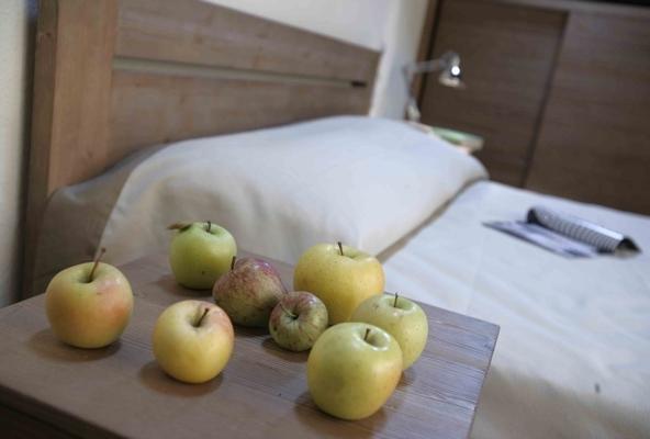 stanza mele verdi-2